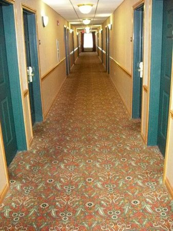 Country Inn & Suites By Carlson, Elyria: Hallway