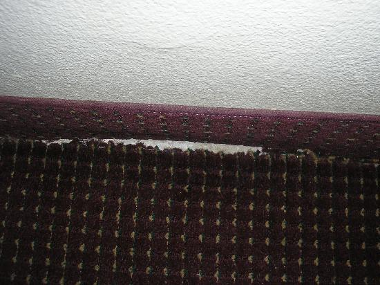 Motel 6 El Paso-Airport-Fort Bliss: Torn carpet.