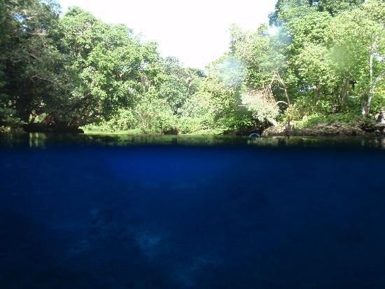 Espíritu Santo, Vanuatu: Blue hole, Unterwasserbild
