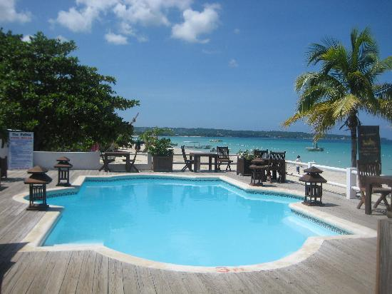 Negril Palms Hotel: Pool