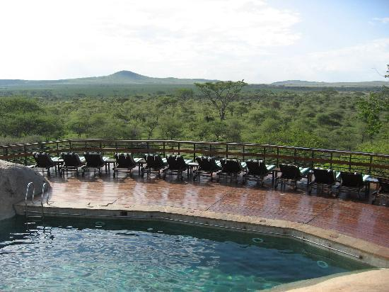 Seronera Wildlife Lodge: pool and view