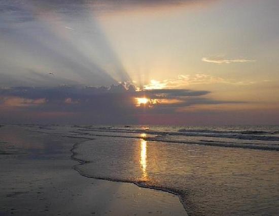 Ocean Forest Villa Resort: Great Morning