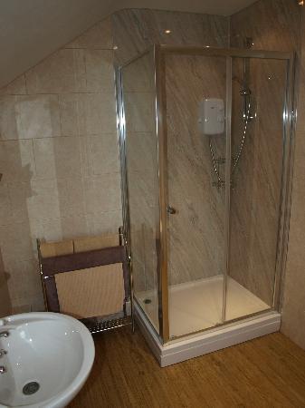 Holly Cottage B&B: bathroom - blue room