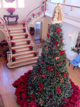 Oak Crest Mansion Inn: Christmas tree in the hall