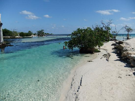 Hacienda Tres Rios: where river meets ocean