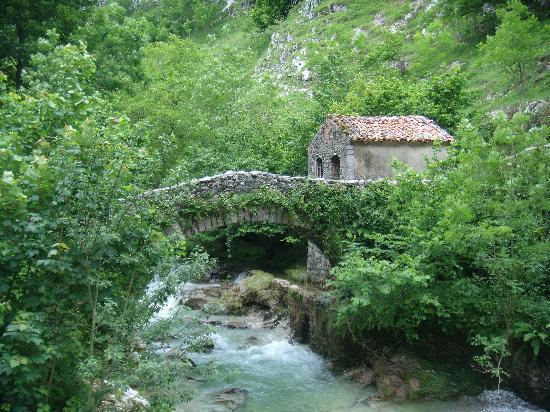 Picos de Europa Mountains: roman bridge