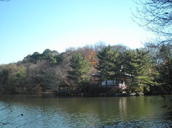 Nerima, Japón: 三宝寺池