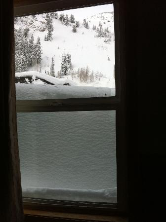 Alta, UT: View from our room window - yes, that is the snow level outside