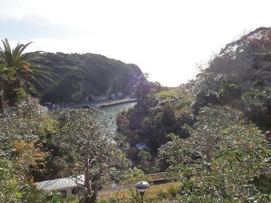 Katsuura, Japón: 部屋からの景色