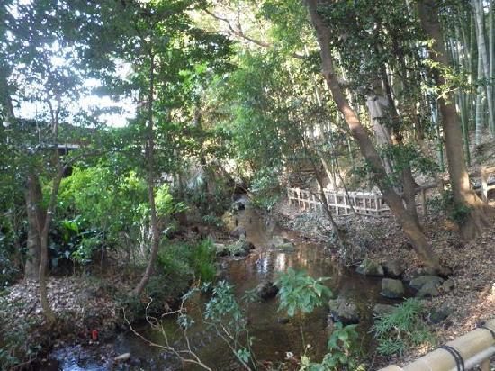 Ochiai River and Minamisawa Springs: 竹林公園内の小川