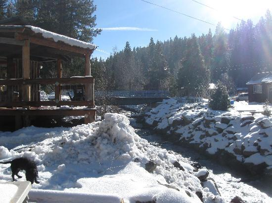Canyon Ranch Resort of Sierraville: cold stream perch