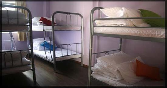 Beds Guesthouse: Dorms