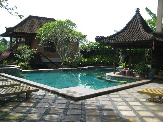 Ubud Bungalow: Pool