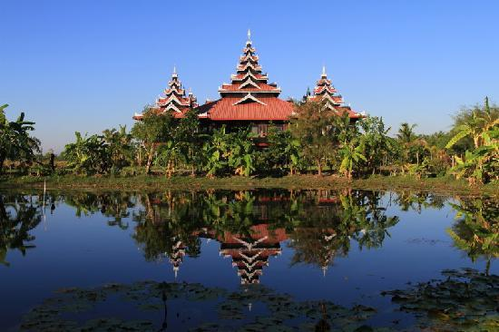 Mrauk Oo Princess Resort : Reflection in the lily pond