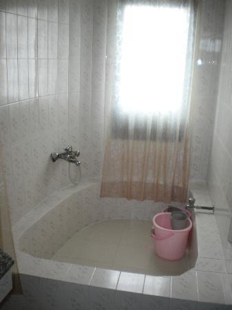 Vatika Guest Home: My bathroom