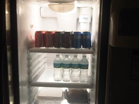 Ed Lugo Resort: stocked fridge