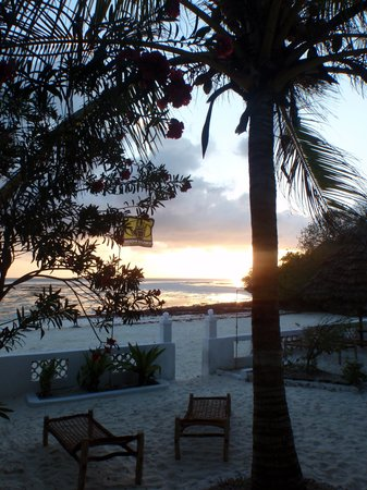 Red Monkey Beach Lodge : Red Monkey at dawn