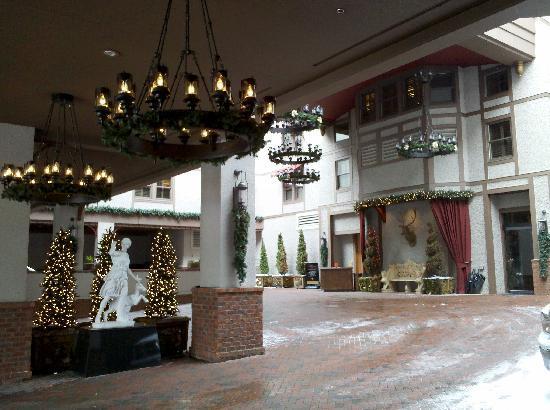Bohemian Hotel Asheville Tripadvisor