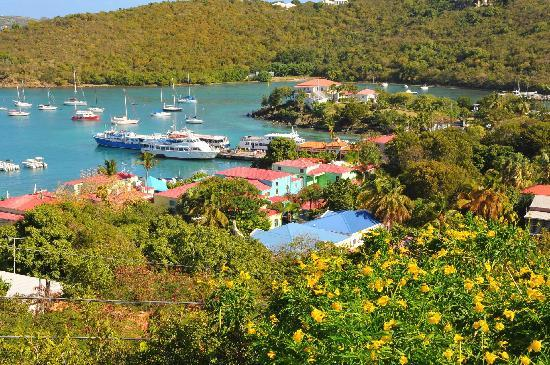Hillcrest Guest House: Cruz Bay from Hillcrest