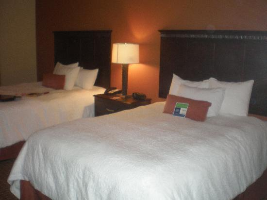 Hampton Inn & Suites Sevierville @ Stadium Drive: Standard Room