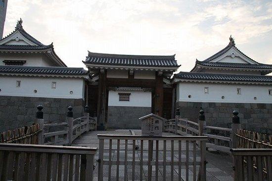 静岡城 (駿府城、府中城)