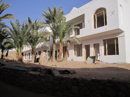 Dahab Divers South Sinai Hotel & Dive center: New accommodation with pool due to open in Feb 11
