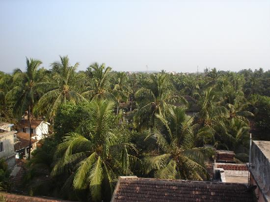 La Baga Beach Hotel: View from Balcony