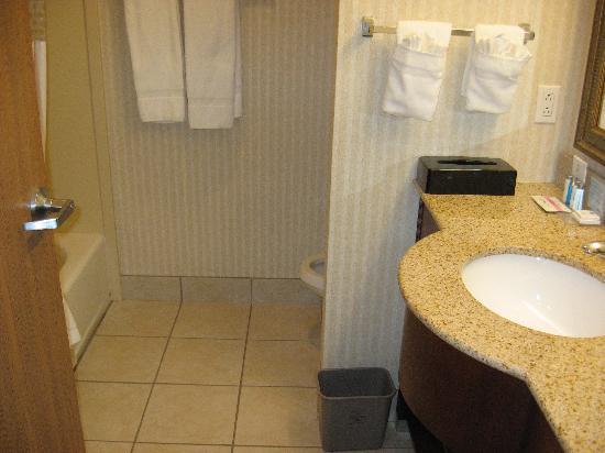 Hampton Inn Gallup-West : Il bagno della 306