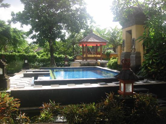 Rumah Bali: Pool we shared in our courtyard