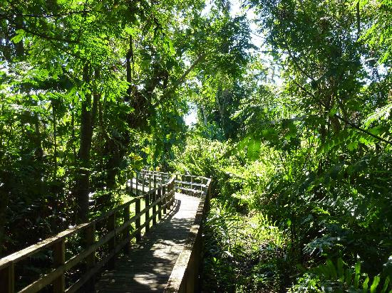 Royal Palm Reserve: Unterwegs im Park