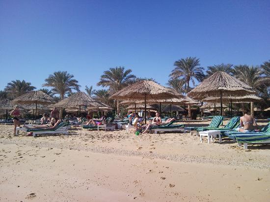 Palmera Beach Resort: Njutning på stranden