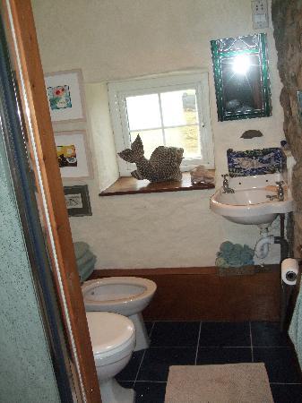Tregeraint House: the bathroom