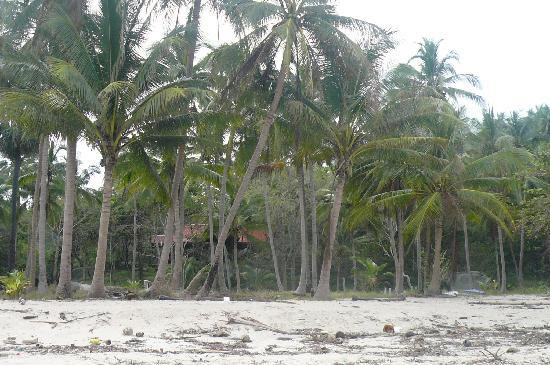 Seaview Bungalows Thansadet: Thansadet beach