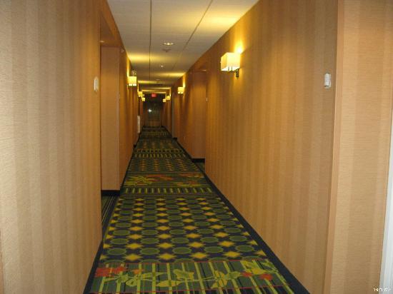 Fairfield Inn & Suites Verona: Corridor