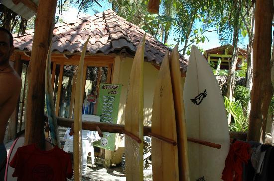 Pacifica Surf Studios: Boards