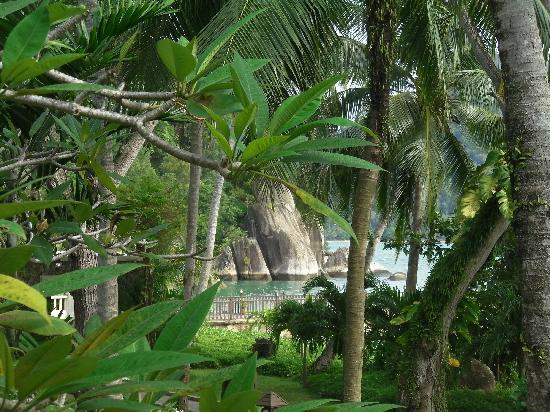 Pangkor Laut Resort: veiw from villa