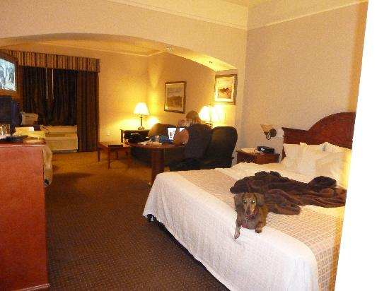 La Quinta Inn & Suites St. George: nice king size bed very comfortable