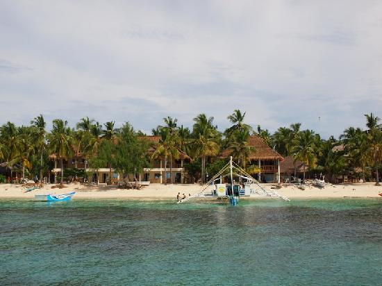 Ocean Vida Beach & Dive Resort: Beach