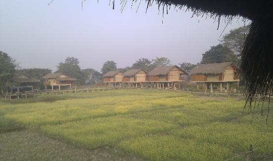 Diphlu River Lodge: The cottages