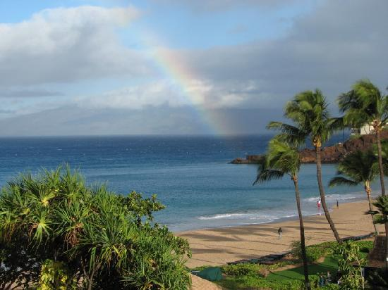 d4180ed2f0b Ka anapali Beach Hotel  Rainbow s every morning. What a great way to start.  Champagne gifted for our anniversary · Nice frames on the walls