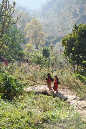Samari Ghar and Lodge: View from Samari