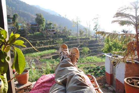 Samari Ghar and Lodge: Ralax on the balcony!