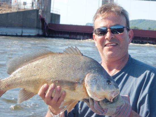Great Alma Fishing Float: 8lb sheephead