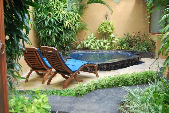 Parigata Spa Villas: Private garden with little pool
