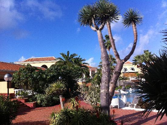 Tenerife Royal Gardens: View from sun terrace