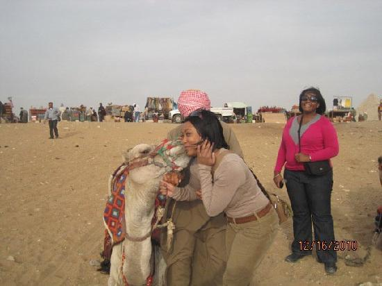 Egypt Bargain Tours: Camel Kisses!
