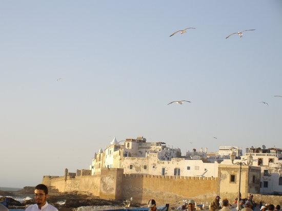 Chez Brahim : essaouira et ses barques bleues