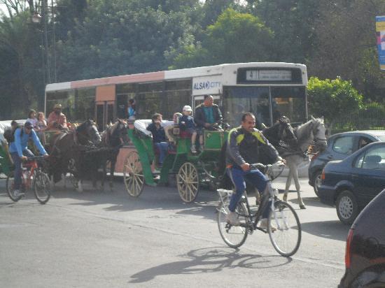 Amalay Hotel Marrakech : rush hour