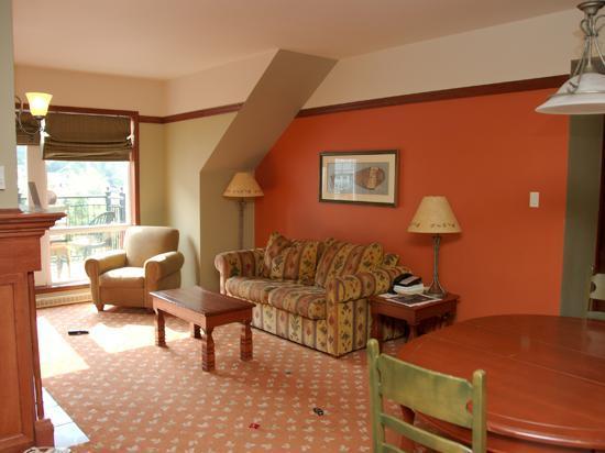 Sommet des Neiges : Living room
