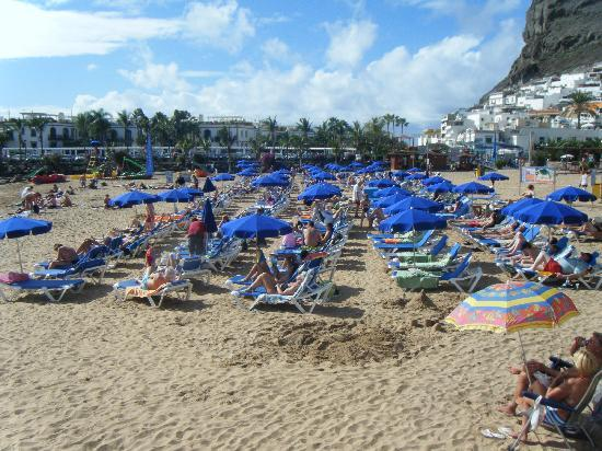 Puerto Bello Apartments: beach at puerto rico